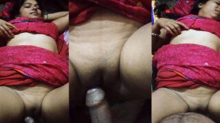 देसी बिहारी भाभी की दर्दनाक चूत चुदाई एमएमएस